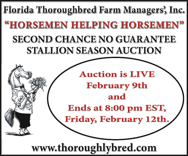 Thoroughlybred.com Home page for ftfm